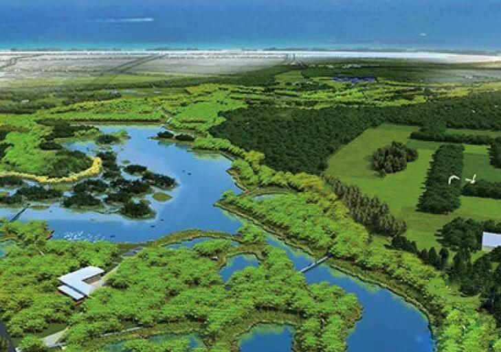 盐城市湿地规划_湿地保护规划_湿地公园规划设计
