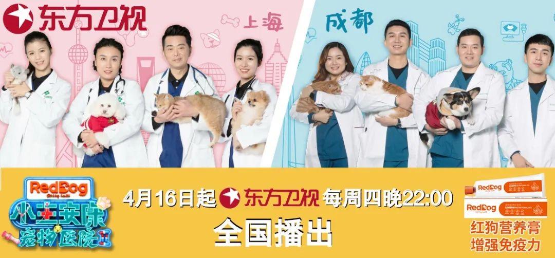 红狗《宠物医院2》上海成都双城就诊,再获东方卫视提名