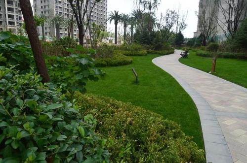 欧式皇家园林,由专业设计团队设计,因地制宜精心挑选名贵植物,每天