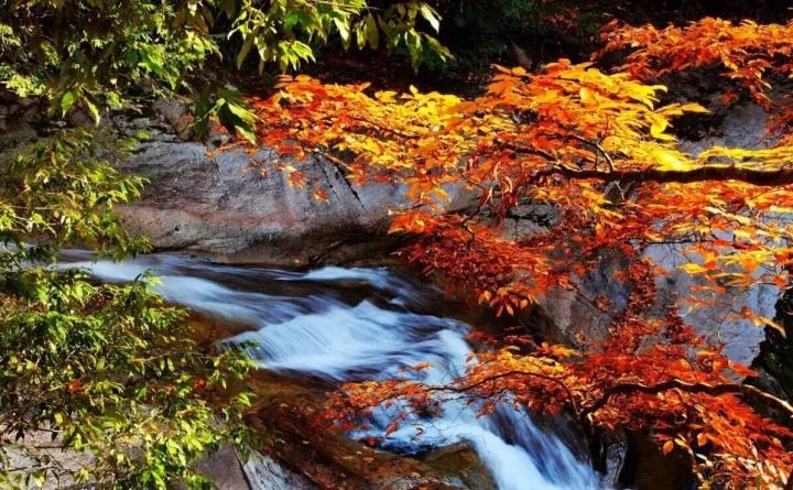 金秋十月在太白县,每一幅美景都能霸占你的手机屏保!