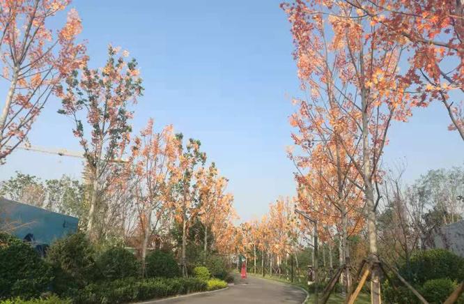 北京普通住宅也飙天价:朝阳1套7000万 海淀1套4700万