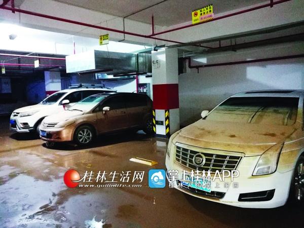 桂林一小区地下车库被淹 谁该为泡水的49辆车买单