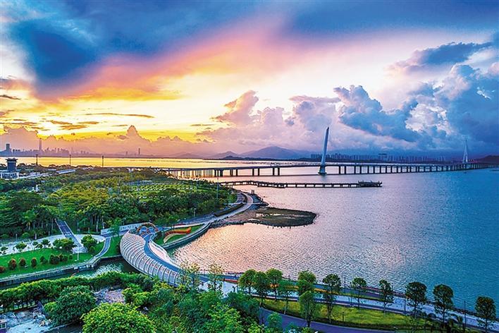 深圳湾滨海休闲带 西段正在魅力升级 延长段提升改造10月开放