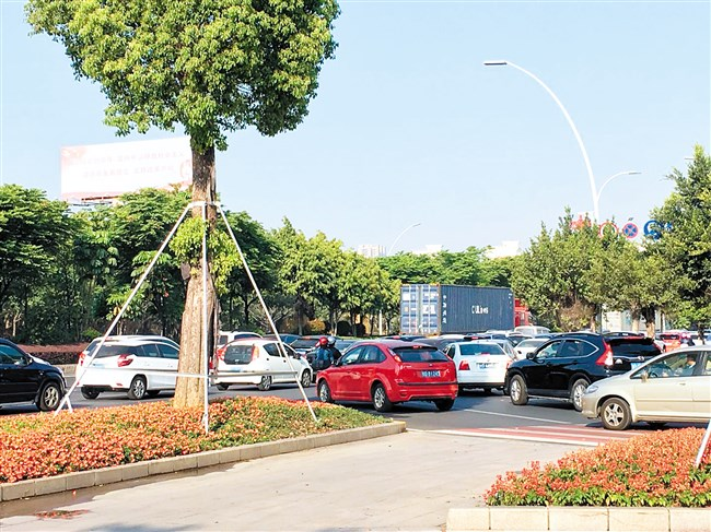 东区交通压力增大亟待缓解 海滨路东延工程仍搁浅