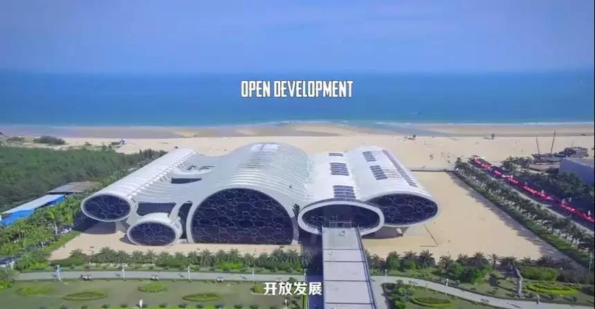 厉害了阳江上完国家宣传片现参加央视《中国森林城市》纪录片拍摄