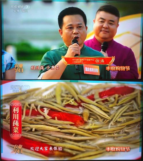 """市长带着利川莼菜上央视!首届中国农民丰收节带火这位""""莼姑娘"""""""