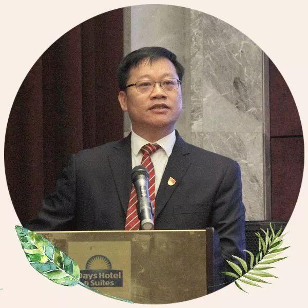 海陵岛经济开发试验区党委书记丁锡丰:海陵岛将打造成国际旅游岛