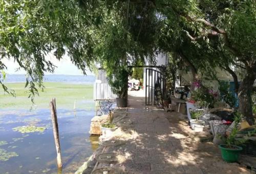 中央环保督察组:大理对洱海周边旅游发展管控不到位