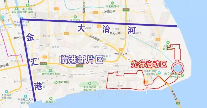 """上海南汇生活_自贸区临港新片区,首付56万""""上车""""-上海搜狐焦点网"""