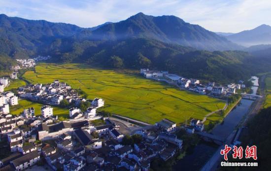 如何处理乡村振兴与新型城镇化之间关系?发改委回应