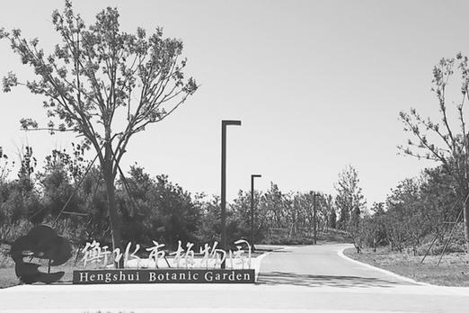 衡水市植物园将于国庆节前开园