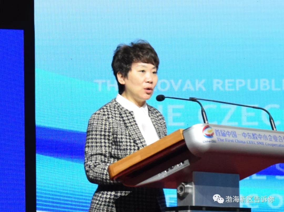 沧州总投资88亿元的16个项目集中签约