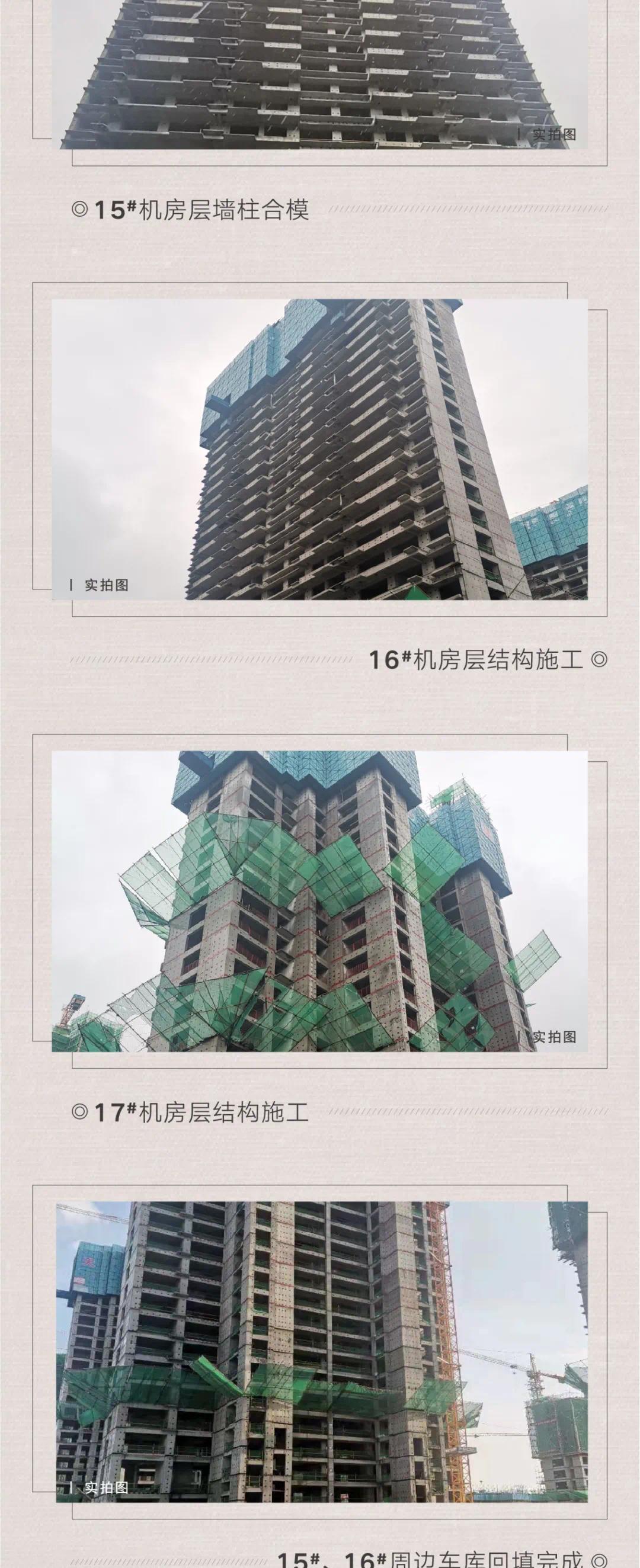 """【天泰中梁九衢世家】――金秋硕果,渐入""""家""""境"""