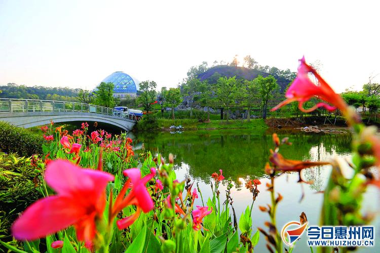 快来看!惠州植物园今天开始试运行 市民可免费参观