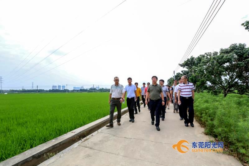 """乡村振兴:东城盘活土地资源 农保地变农""""宝""""地"""