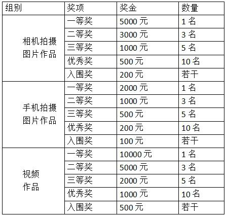 尋找最美燈光·獻禮改革開放 深圳城市照明攝影大賽正式啟動