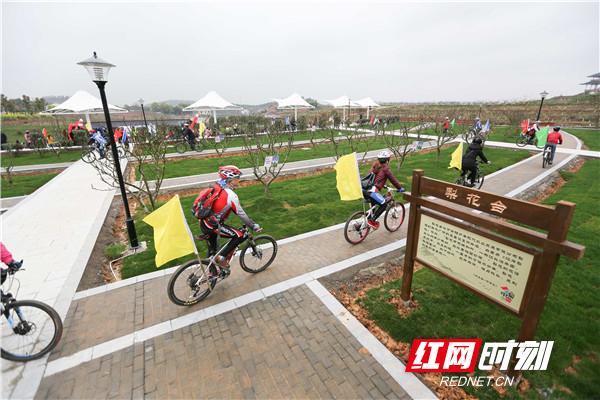 湖南4地入选全国百个乡村游景点 珠晖区金甲梨园榜上有名