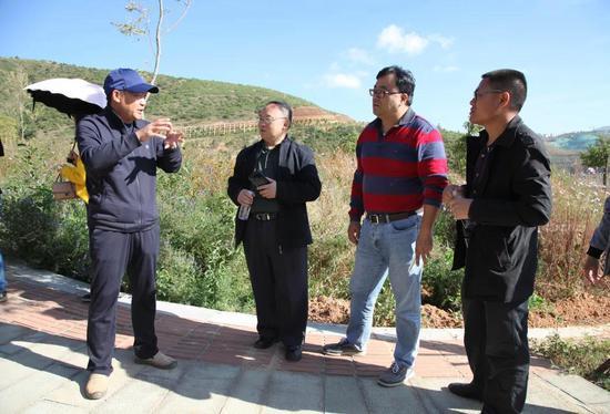 大理海东新城边坡绿化生态修复关键技术项目通过验收