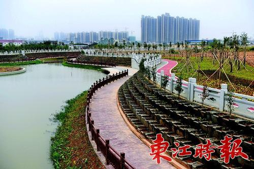 惠州市区4条河涌整治即将完成 另外9条加快整治
