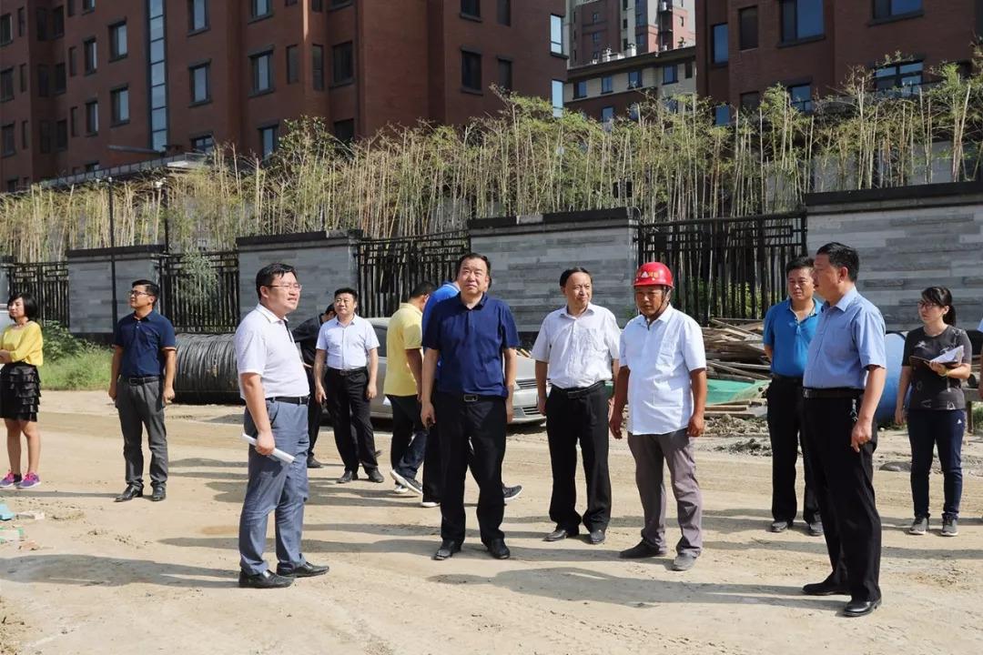 太白湖新区主要领导调度文化中心图书馆、群众艺术馆等项目建设