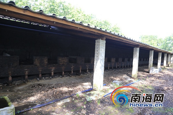 定安依法拆除槟榔黑果加工厂 面积1500平方米