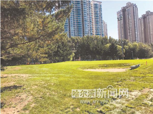 湘江公园25日投用 将开放草坪让市民露营开派对