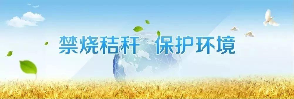 """共青团济宁市委倡议:守护""""济宁蓝"""" 向秸秆焚烧说""""不"""""""