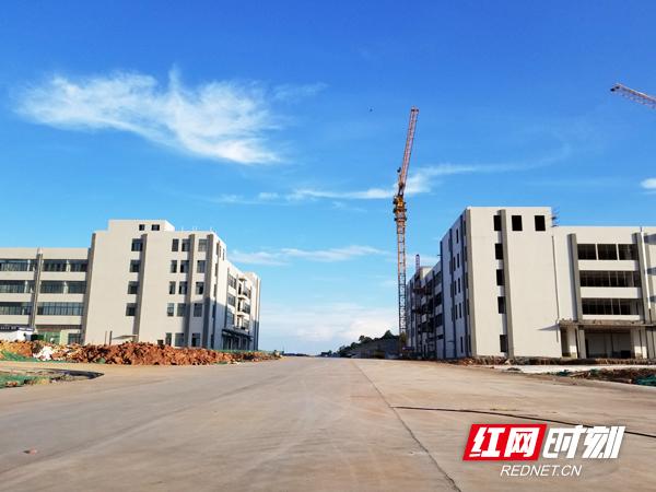 白沙洲工业园区:打造最强执行力 规模工业总产值65.9亿元