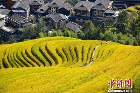 目标60亿元!广西旅游民宿要有大发展,北海涠洲岛