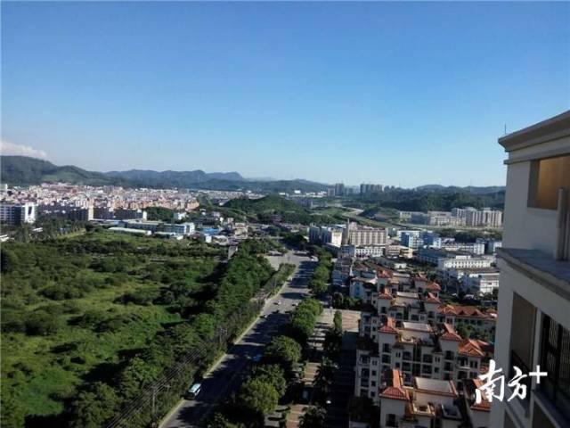 想想就甜!东莞这个社区要打造2万m²的岭南特色荔枝园