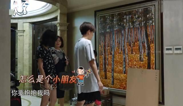 徐海乔的欧式风格豪宅,棒棒哒!