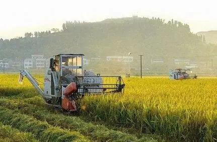 规模效应惠农民,山东土地流转面积达到3266万亩