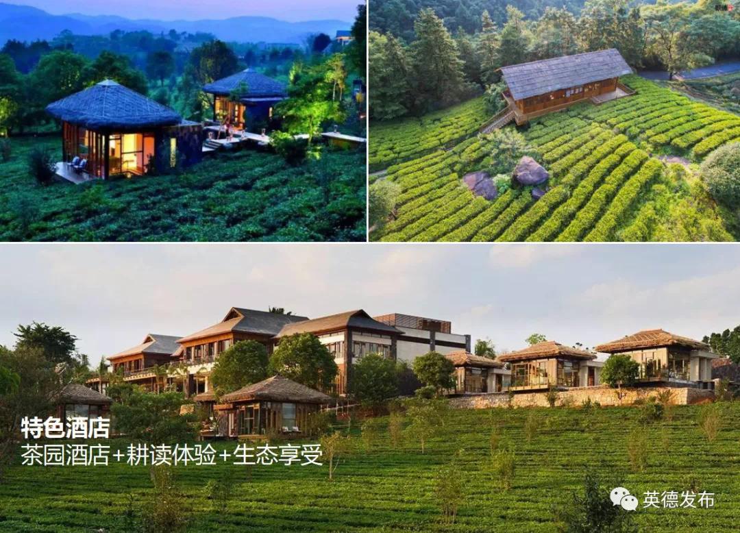 滑索、攀岩、水上蹦极……清远拟打造华南首席休闲体育小镇