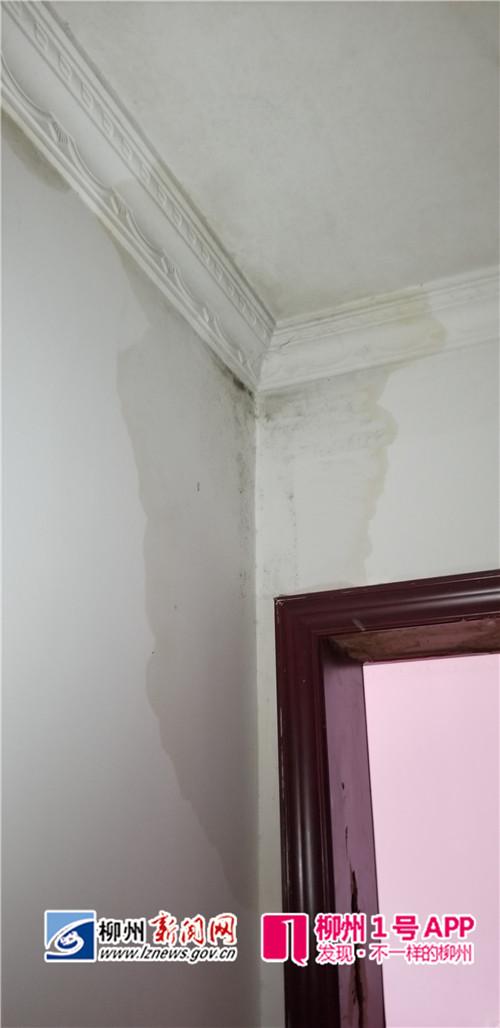 """楼上装修  楼下成""""水帘洞"""" 屋主想找对方却发现失联"""