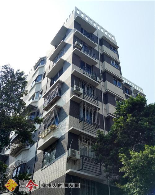柳州沿江景观提升改造,房屋旧貌换新颜