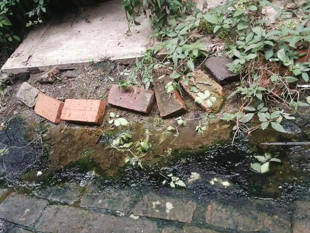 保定一小区院内污水外溢,居民出行不便!部门:下周维修