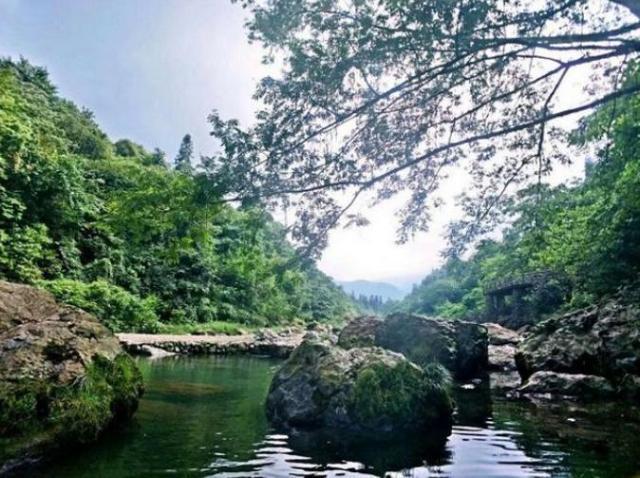 金杯半山:用康养文旅产业拥抱绿水青山