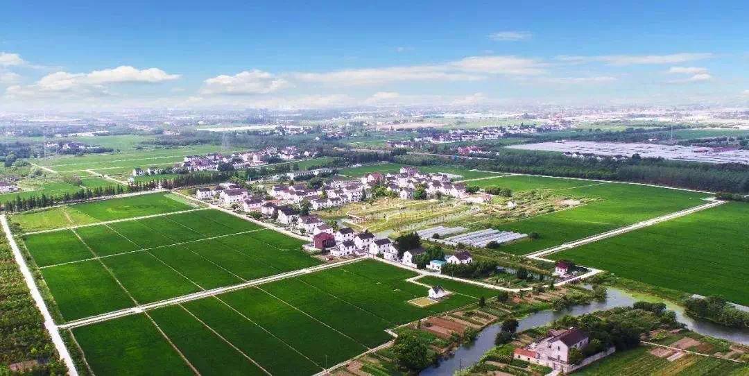 重磅:菏泽这1个县、7个镇选为乡村振兴齐鲁样板标杆!