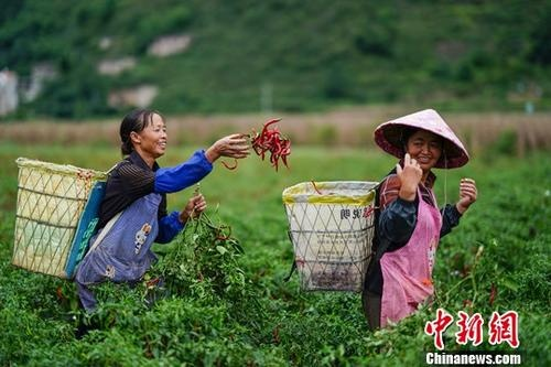 发改委:中国将着力从三方面促进城镇和乡村共同发展