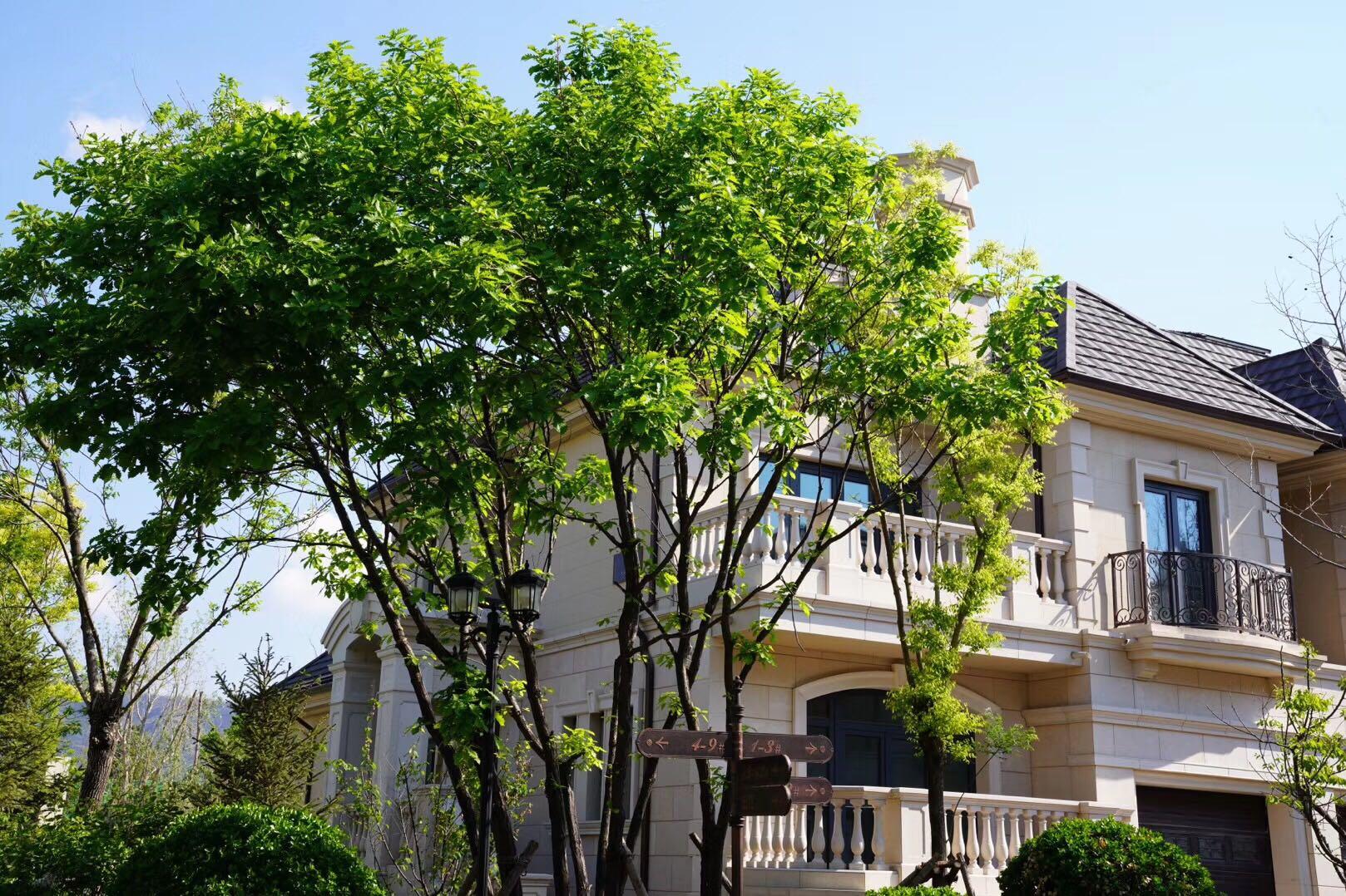2020上海松江区中海九峯里售楼处电话;售楼处位置;