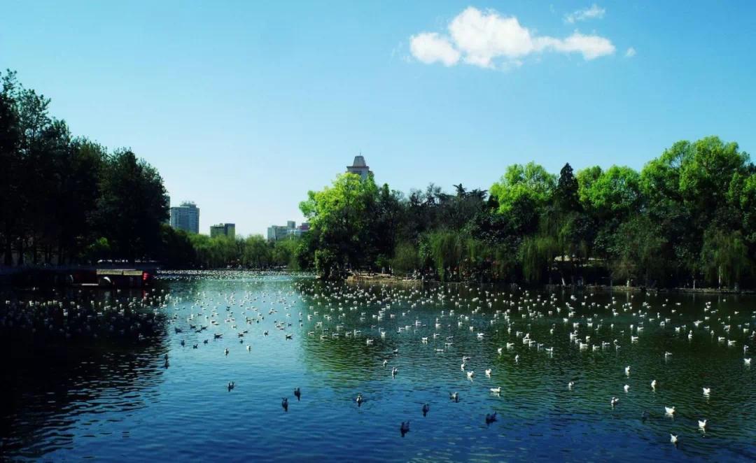 云南買房,這四大熱門城市都有哪些優勢?