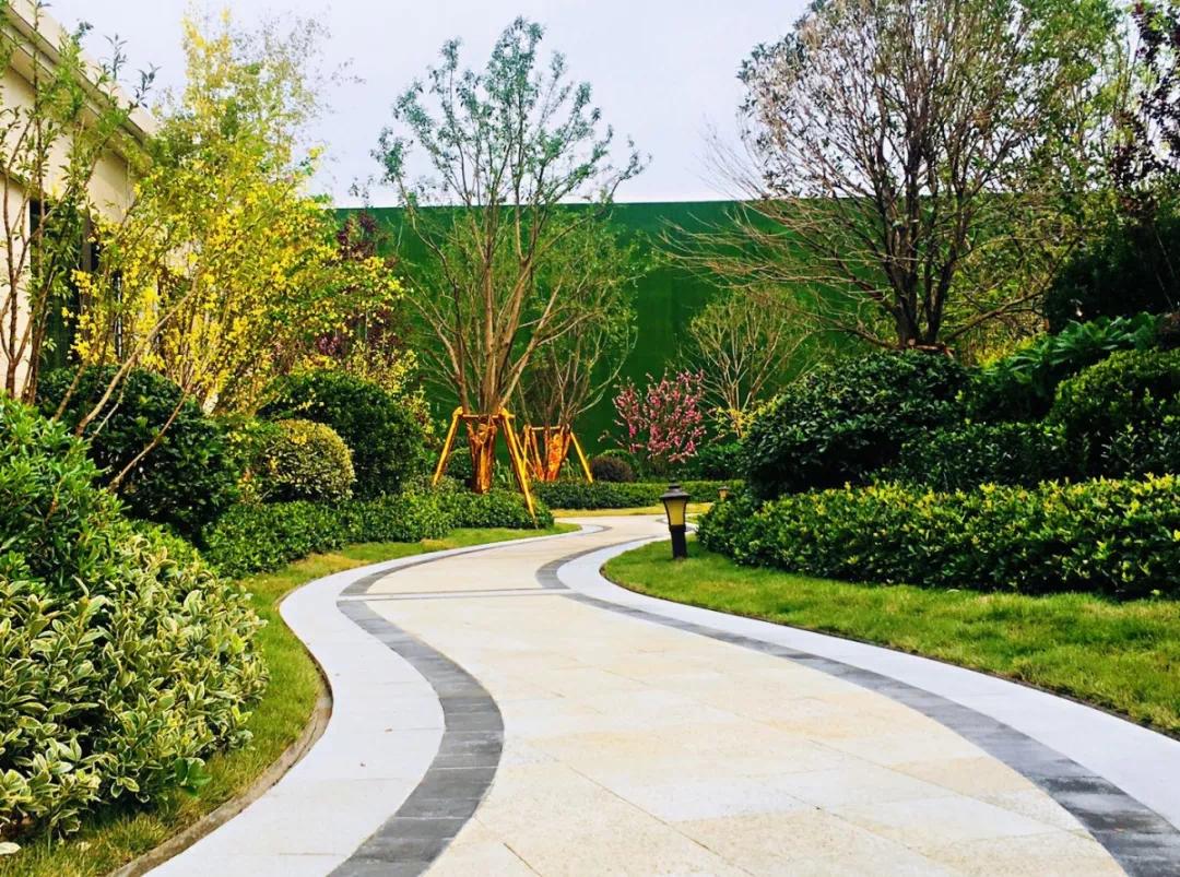 园中葱翠 在于佳木|归家的每步风景 都是树木的礼赞