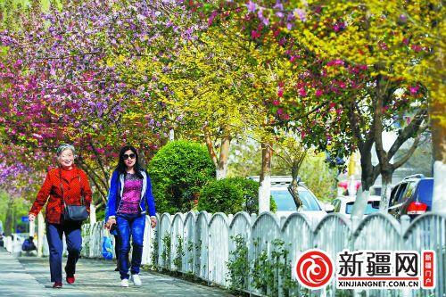 乌鲁木齐:春光明媚幸福城 游园跳舞欢乐多