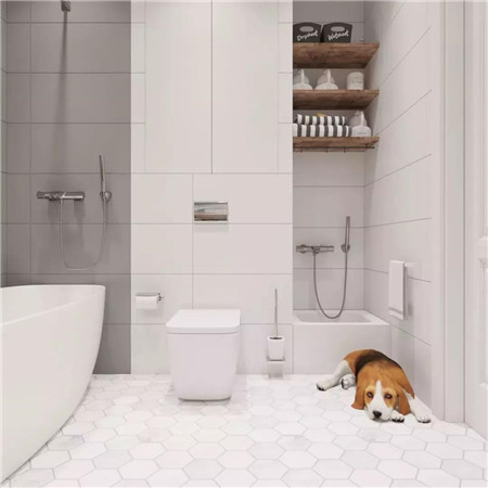 房子裝修與設計后衛生間總特潮?