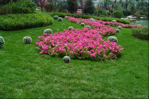 恒大绿洲|中央湖景园林,领略独家春夏秋冬!