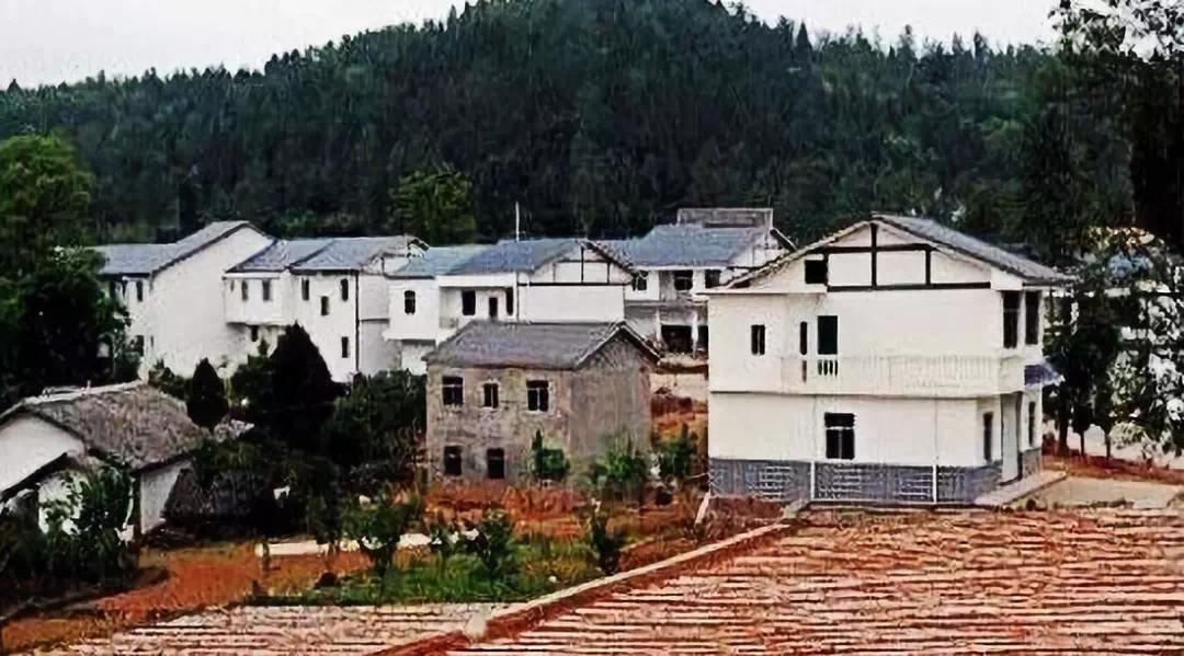 农村宅基地房屋能不能买?法律后果到底怎么样?