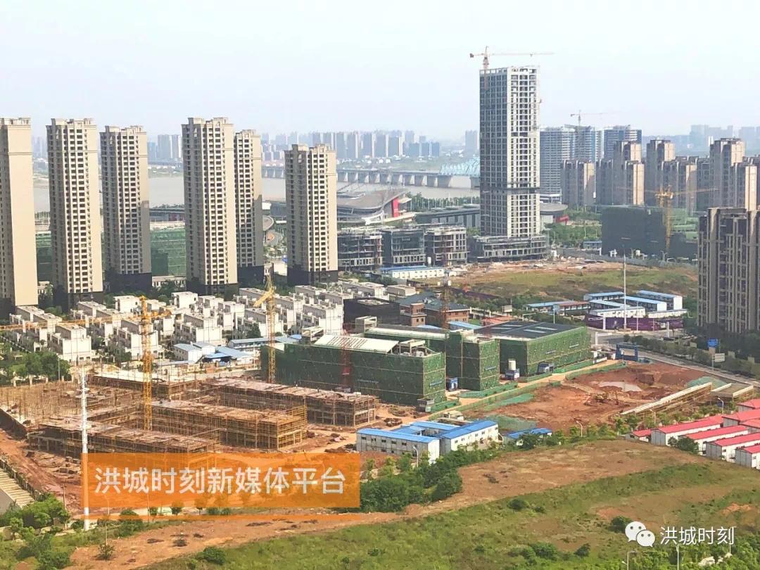 速度!九龙湖小学今年9月开始招生!国博城育新动工建设!
