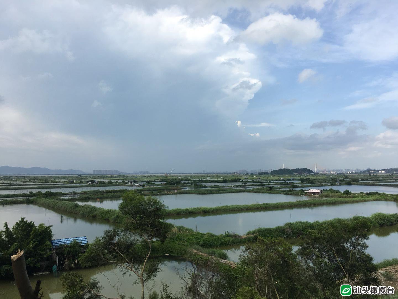 牛田洋快速通道:加快全面铺开建设 打造连通江湾新区两岸大动脉