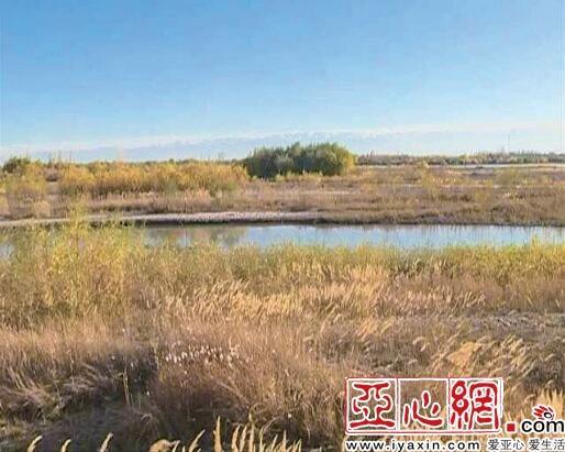 新疆有望再增一处国家级湿地公园