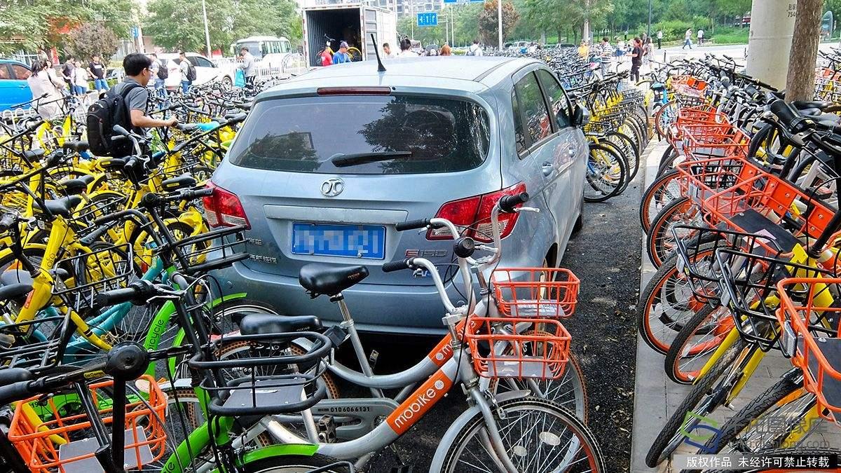 MARMOT土拨鼠顶级碳纤维自行车品牌谈共享单车转场